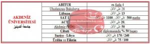 البكالوريوس في تركيا